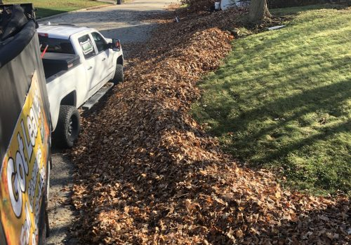 Fallen leaves needing to be cleared out, as a part of fall and spring cleanup services for Peoria IL
