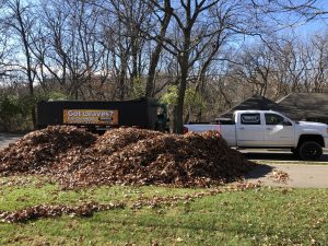 A big pile of leaves getting ready to be collected and carried away as a part of fall cleanup in Peoria IL