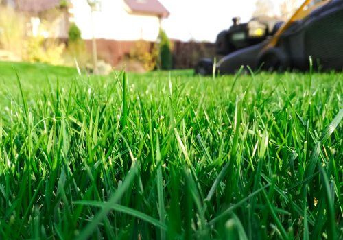 Close Up of Lawn Mower Being Used for Lawn Mowing Services in Washington IL